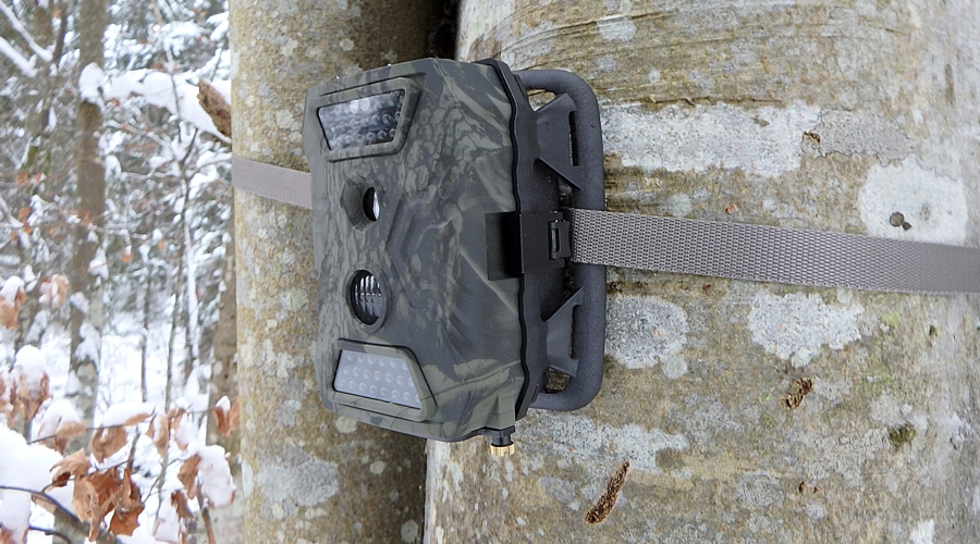 best blackout trail camera