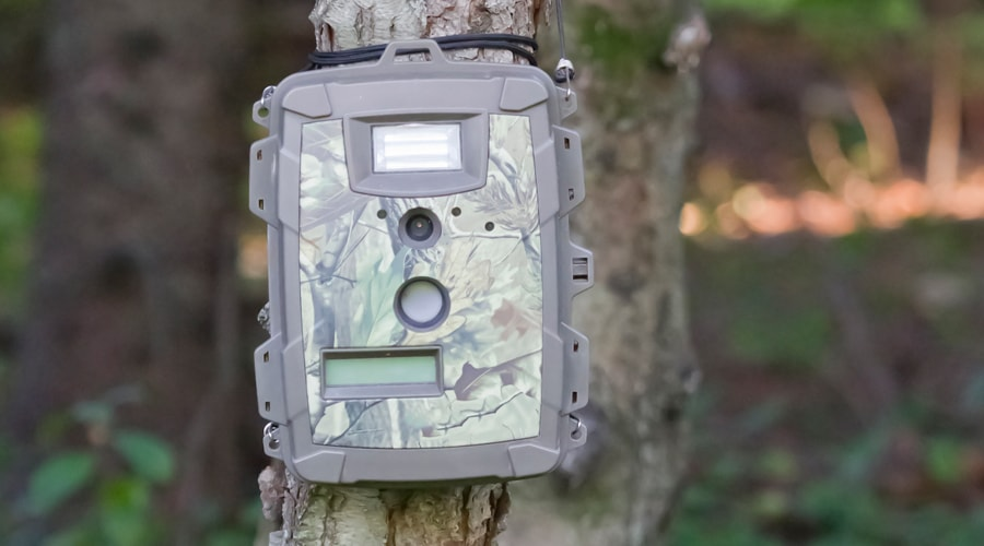 best trail camera on the market today