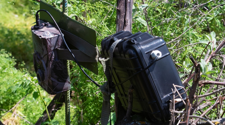 best trail camera that sends pictures to cell phone