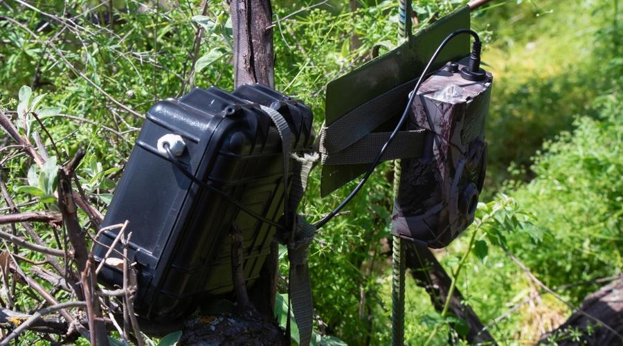 do trail cameras have gps