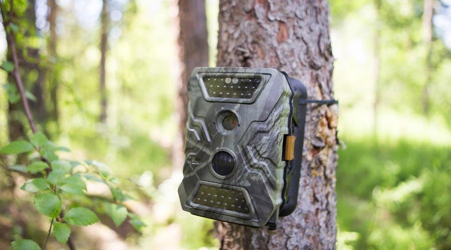 how do cellular trail cameras work