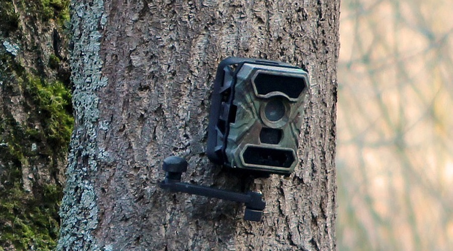 is it legal to put trail cameras on public land
