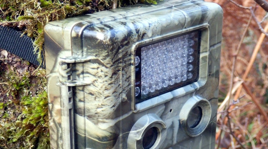 what is the best cellular trail camera